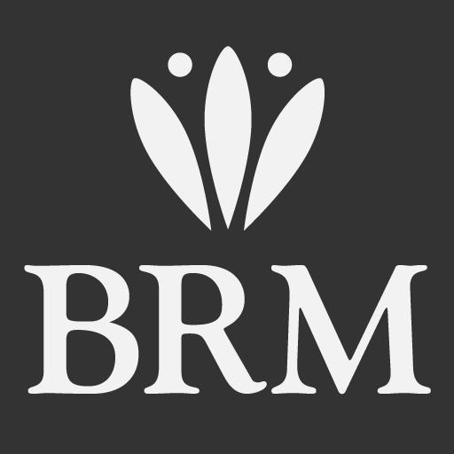 User Avatar of BRM Web Dev
